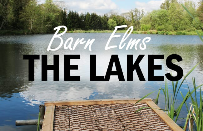 the-lakes-at-barn-elms-trout-fishery-1