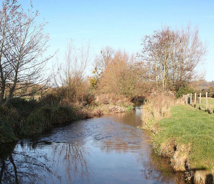 river pang at barn elms